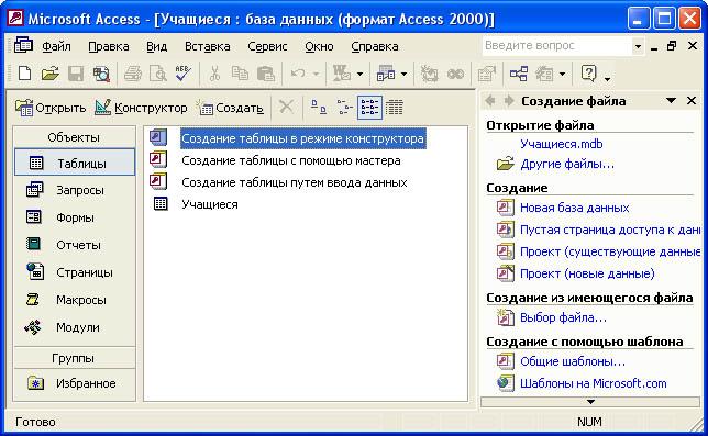 субд access применение программы